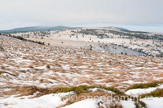 Zasněžená tundra na Vysoké holi