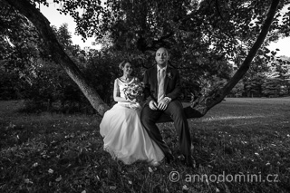 Novomanželé na větvi